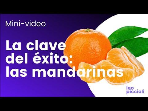 LA CLAVE DEL ÉXITO: las mandarinas | CEO en camiseta | Leo Piccioli