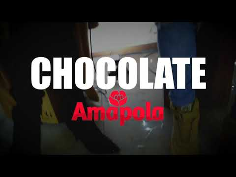 AMAPOLA - CHOCOLATE ACÚSTICO