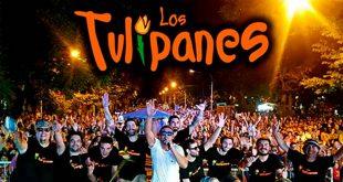 los tulipanes rock panchanga