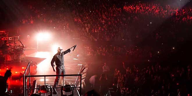 pitbull reggaeton