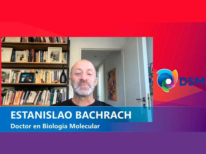 estanislao bachrach para dsm
